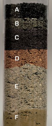 Aufbau ohne Nanoalps® System SOIL